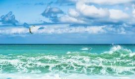Sommarwatersportbakgrund av att surfa för drake och blått vatten Fotografering för Bildbyråer