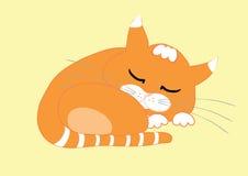 Sommeil de chat Image libre de droits