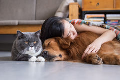 Sommeil de filles avec des chats et des chiens Photographie stock