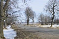 Sommeil en bois d'hiver Photographie stock