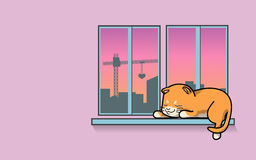 Sommeil mignon de chat à la fenêtre Image libre de droits