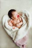 Sommeils nouveau-nés de bébé enveloppés dans la couverture blanche Image stock