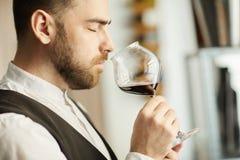 Sommelier bello Smelling Wine fotografia stock libera da diritti