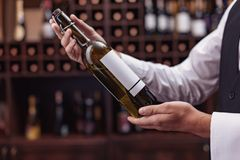 Sommelier with bottle of wine. Cropped view man sommelier holding bottle of wine in hands Royalty Free Stock Photos