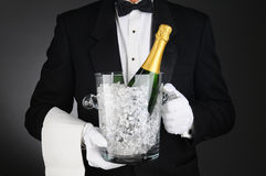 Sommelier with Champagne Ice Bucket. Closeup of a Sommelier holding a Champagne Ice Bucket in front of his torso. Horizontal format on a light to dark gray Stock Image