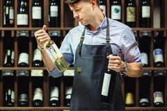 Sommelier choosing between two bottles of red and white wine. On background of shelves with elite drink in cellar. Professional expert in winemaking in apron stock photography