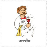 Sommelier. Collection of wine.  Vector illustration Stock Photos