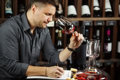 Sommelier degustating red wine poured in glass. Sommelier male degustating red wine poured in glass looking at color of alcoholic beverage, making notes and stock photos
