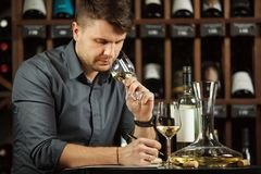 Sommelier degustating white wine poured in glass. Sommelier male degustating white wine poured in glass looking at color of alcoholic beverage, making notes and royalty free stock image