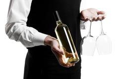 Sommelier del cameriere con la bottiglia di vino Immagini Stock Libere da Diritti