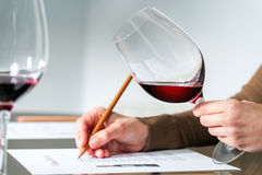 Sommelier evaluating red wine. Extreme close up of sommelier evaluating red wine in wine glass at tasting Royalty Free Stock Photos