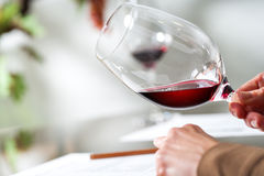 Sommelier evaluating wine at tasting. Macro close up of Sommelier evaluating wine at tasting Royalty Free Stock Photo