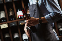 Sommelier holding wine bottle in cellar on background of shelves Royalty Free Stock Image