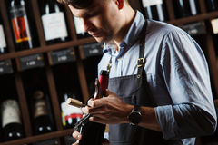 Sommelier holding wine bottle in cellar on background of shelves Royalty Free Stock Photo