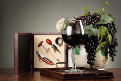Sommelier kit. With a red wineglass and grapes composition . Grey backdrop Stock Images