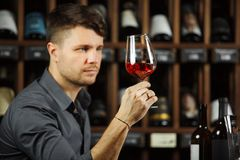 Sommelier looking at red wine glass with beverage. Sommelier looking attentively at red wine glass with white beverage poured in it, scrutinizing drink on light Royalty Free Stock Photography