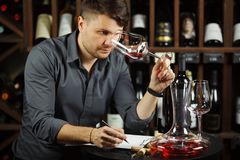 Sommelier looking at red wine glass with beverage stock images