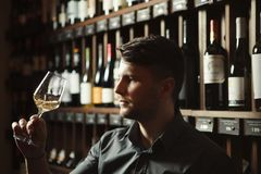 Sommelier looks at white wine in glass in cellar. Sommelier looks at white wine in shiny glass in cellar with large shelves full of exquisite delicious alcohol royalty free stock photography