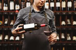 Sommelier maschio che versa vino rosso nei bicchieri di vino dal gambo lungo Immagini Stock Libere da Diritti