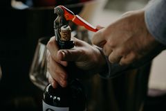 Sommelier opening wine bottle in the wine cellar.  royalty free stock photography