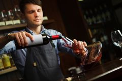 Sommelier pouring wine into glass from decanter. Male waiter. On background of bar counter with bottle of red wine Royalty Free Stock Photography