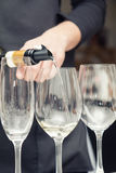 Sommelier pouring wine to the wine glass. Sommelier pouring white wine to the wine glass. Serving table prepared for event party or wedding. Soft focus Stock Photography