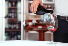 Sommelier pouring wine into wineglasses Royalty Free Stock Image