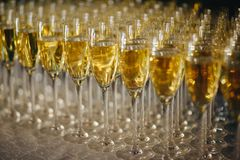 Sommelier pours champagne from a bottle into a glass at the table in the restaurant royalty free stock images