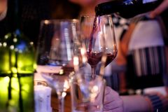 Sommelier pours red wine into  glass. Sommelier pours red wine into the guest`s glass in the restaurant Stock Image