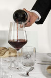 Sommelier. A sommelier pours the wine into a glass Royalty Free Stock Image