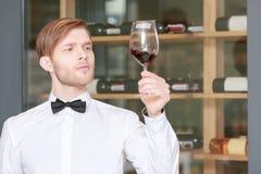 Sommelier que prueba el vino rojo foto de archivo