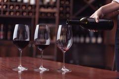 Sommelier que vierte el vino rojo foto de archivo libre de regalías