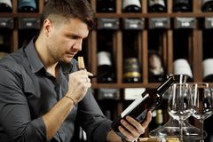 Sommelier reading label of bottle sniffing cork. Sommelier reading label emblem of wine bottle holding in hands and sniffing cork of newly opened container stock images