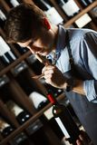 Sommelier smelling flavor of cork from red wine. On background of shelves with bottles in cellar. Male appreciating quality of drink. Professional degustation stock photo