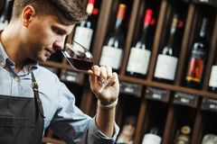Bokal of red wine on background, male sommelier appreciating drink royalty free stock image