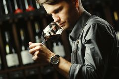 Bokal of red wine on background, male sommelier appreciating drink stock image