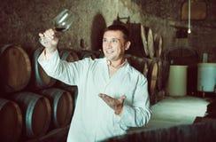 Sommelier som kontrollerar kvalitet av rött vin i fabrik Royaltyfria Foton