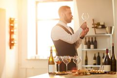 Sommelier in Sunlight. Side view portrait of professional sommelier preparing for wine tasting session in sunlight, copy space stock images