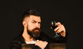 Sommelier tastes expensive drink. Winetasting and degustation concept. Degustator with serious face. Leans on wooden chair. Man with beard holds glass of wine Stock Photos