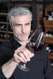 Sommelier tasting red wine. Stock Photos