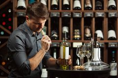 Sommelier in wine cellar degustating beverage. Sommelier in wine cellar degustating alcohol beverage holding bottle in left hand and sniffing opened cork placed stock photography