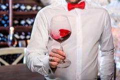 Sommelier in the wine cellar. Sommelier kneading wine in the wine glass in the wine cellar royalty free stock photo