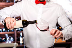 Sommelier in the wine cellar. Sommelier pouring wine to the glass in the wine cellar royalty free stock photos
