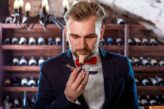 Sommelier in the wine cellar. Sommelier smelling corck in the wine cellar stock images