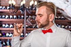 Sommelier in the wine cellar. Sommelier tasting wine in the wine cellar Stock Image
