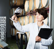 Sommelier woman on winery Stock Photo