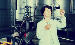 Sommelier woman on winery Royalty Free Stock Photography