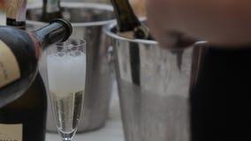 Sommelieren häller ett exponeringsglas av champagne i flott stock video