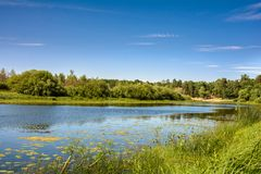 Sommer auf der Flussbank lizenzfreies stockfoto