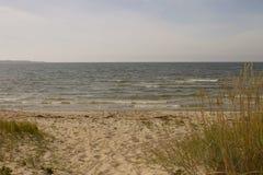 Sommer auf Ostsee Stockbild